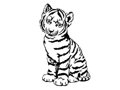 free coloring pages of cute tiger cub
