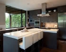 cool kitchen cabinets espresso kitchen cabinets elegant