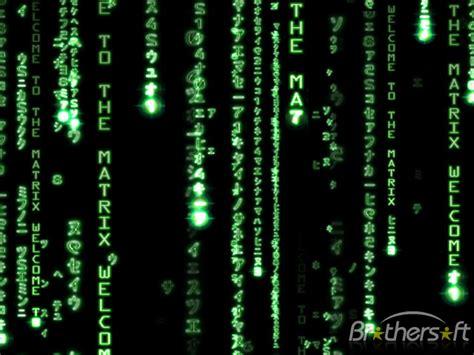 dynamic matrix  dynamic matrix