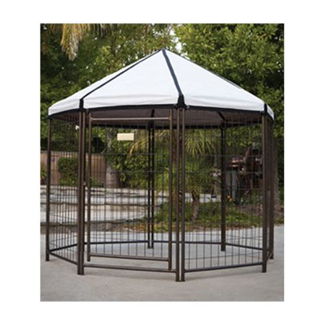pet gazebo advantek 60 quot gazebo pet pen reviews wayfair