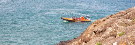 boat trips near me skippered boat hire near me in cornwall padstow sea life