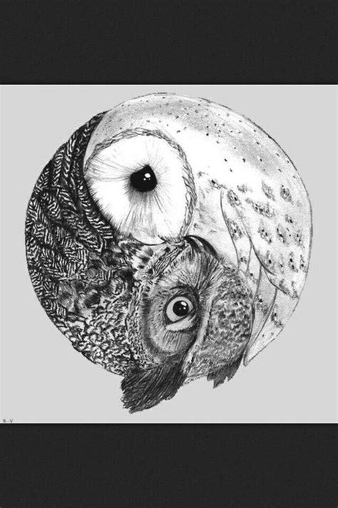 black and white owl tattoo 42 best owl tattoos black and white images on
