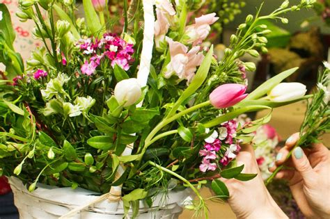Cut Flower Care How To Make Fresh Flowers From Your Cut Flower Garden List
