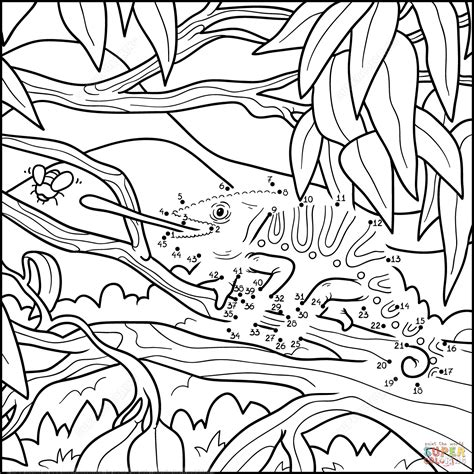 camouflaged animals coloring info pages allaboutnature com chameleon dot to dot free printable coloring pages