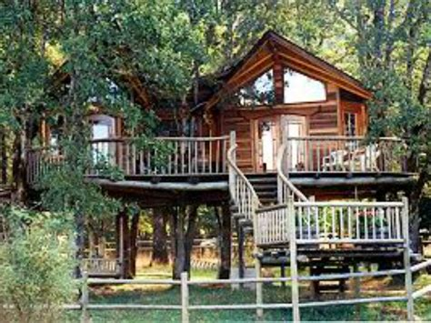 wallmarks tree house hotels treehouses where you can stay kid friendly lodging