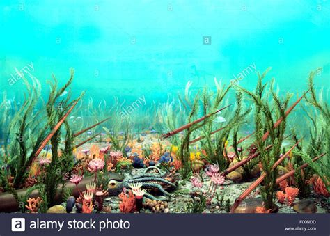 stock photos stock images alamy ancient ordovician stock photo royalty free image