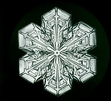 bentley snow snowflakes the extraordinary micro photographs of winter