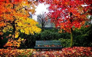 paisajes bonitos imagenes fotos wallpaper fondos de imagenes hd gratis paisajes