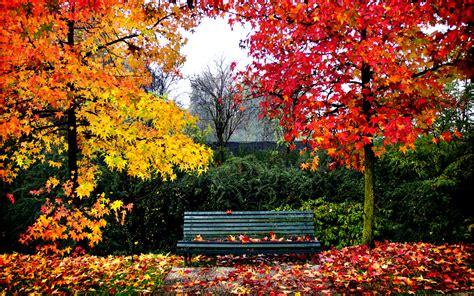 imagenes de otoño y primavera paisajes del oto 241 o fondos de pantalla
