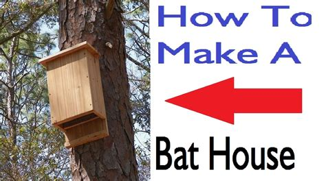 build a house free how to build a bat house