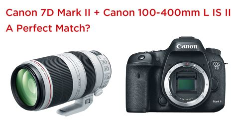 recommended canon 7d mark ii settings photography life canon 7d mark ii canon 100 400mm l is ii perfect match