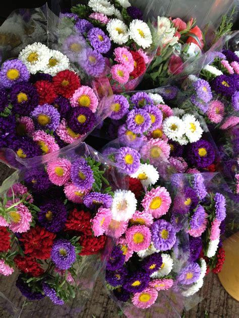 imagenes de flores preciosas 14 best images about flores preciosas on pinterest
