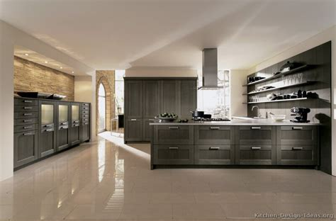 Contemporary Kitchen Cabinets | pictures of kitchens modern gray kitchen cabinets