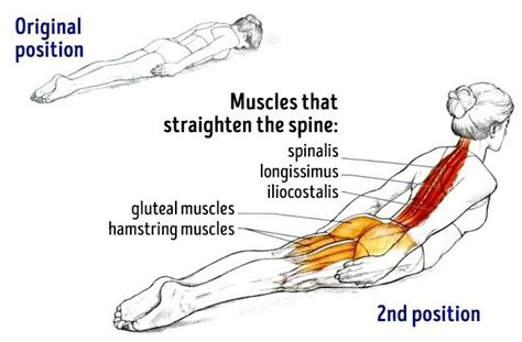 this one simple exercise your posture