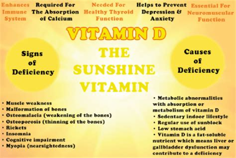 After You D signs of vitamin d deficiency human n health