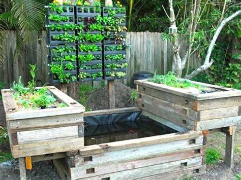 aquaponic backyard practical aquaponics for growing nutritious vegetables