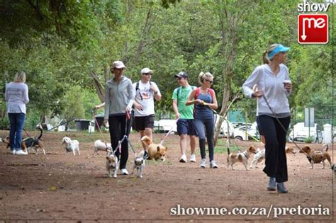 wag walking tshwane spca wag a walk 16 january 2016 pretoria