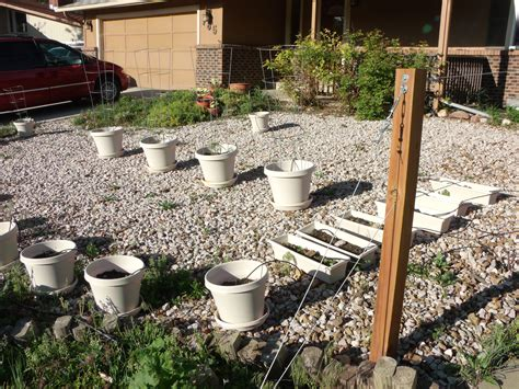 Low Cost Low Maintenance Landscaping Ideas Excellent Low Cost Garden Ideas