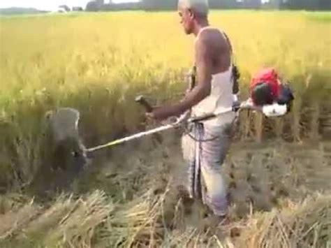 Mesin Potong Rumput Untuk Padi Modifikasi Mesin Perontok Padi Videolike