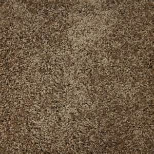 shaw carpet colors all flooring solutions hardwood floors nc