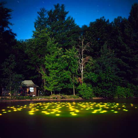 amazing landscape light installations by barry underwood