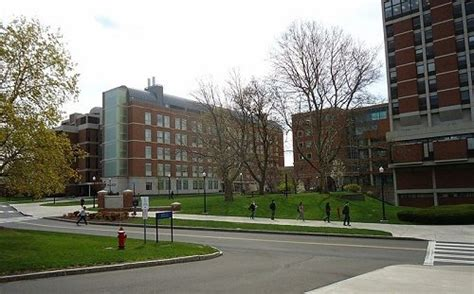 Of Rochester Mba Ranking by Top 15 Master S In Finance Degree Programs Degreequery