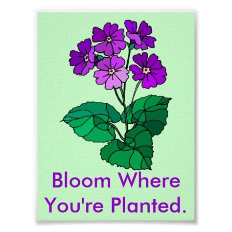 bloom for yourself books wise quotes sayings pictures and images