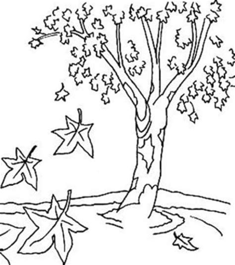 coloring now 187 blog archive 187 autumn coloring pages