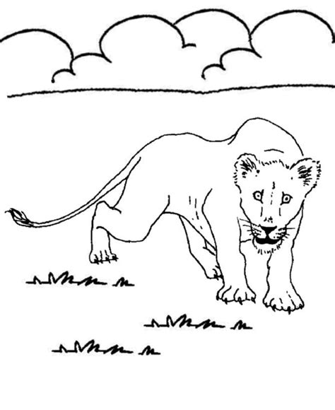 coloring pages animals a z animal coloring pages for adults az coloring pages