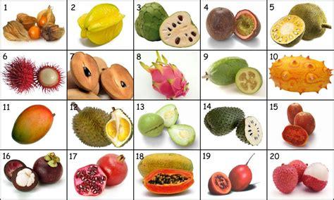 4 fruits name fruits name more photos