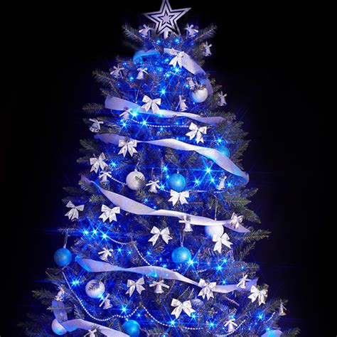blue christmas trees for sale photo albums fabulous