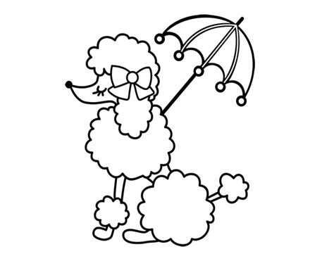 poodle coloring pages poodle with sunshade coloring page coloringcrew