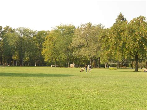 giardini margherita giardini margherita alberi pericolanti al via l abbattimento