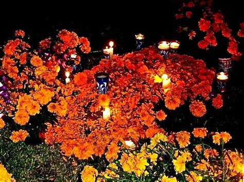 Pdf Flowers Dia De Los Muertos by Dia De Los Muertos Lifelessons A By Judy Dykstra