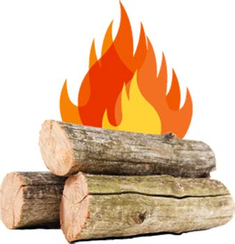 Dnr Don T Move Firewood