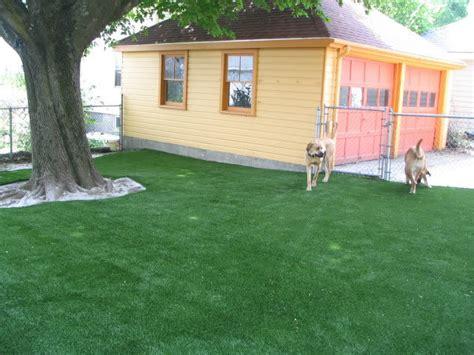 astro turf backyard astro turf yard dop designs
