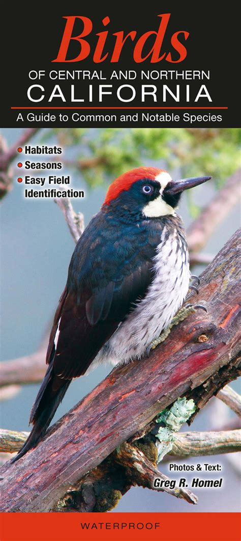 quick reference publishing birds of central and northern