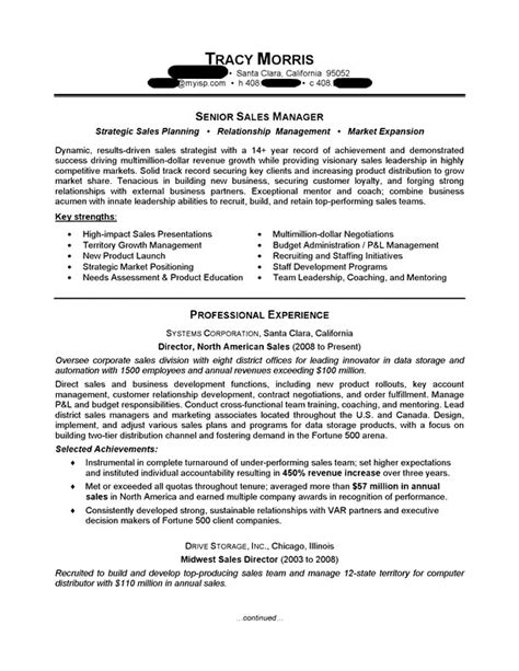 sales manager resume sle professional resume exles