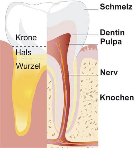 Beschriftung Zahn by Aufbau Zahnarzt Wolfsburg Zahnmedizinisches