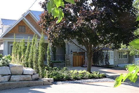 amazing front yards an amazing front yard transformation fiona s garden gate