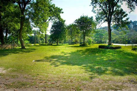 imagenes deareas verdes ronciglione adotta un area verde affidate ai cittadini