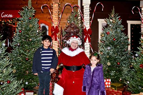 christmas trees irvine guide to visiting the irvine park railroad oc oc