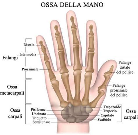 la mano sulla mano