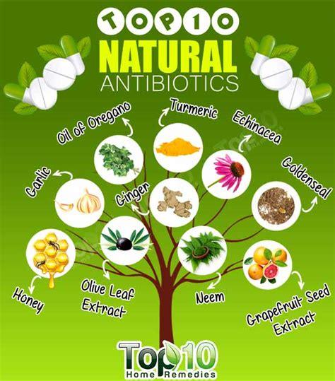 top 10 antibiotics top 10 home remedies