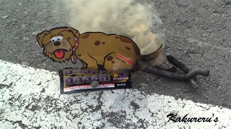 poopy puppy pooping firework poopy pooch poopy pup