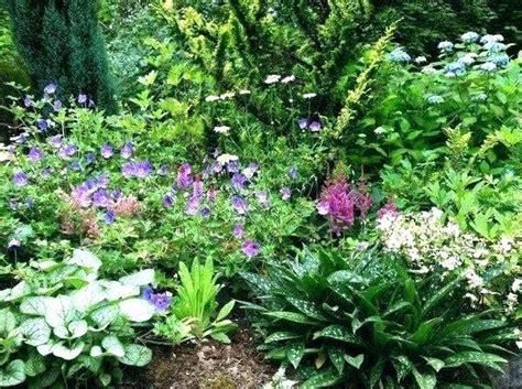 shade garden perennials garden ftempo