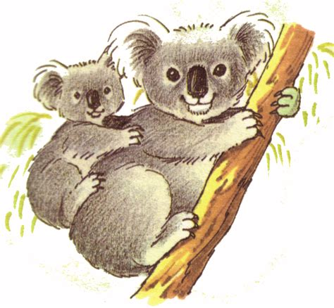koala clipart koala clipart babyshower kid clip and