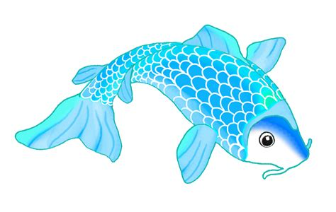 koi fish drawing color koi fish drawing color blue