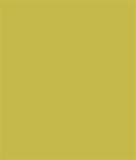 buy asian paints apex exterior emulsion asparagus at low price in india snapdeal