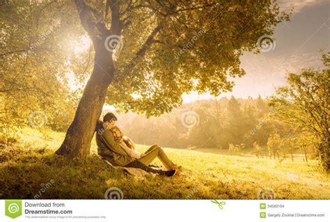 anime couple under a tree loving couple under a big tree stock images image 34569104